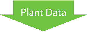 Plant Data Arrow